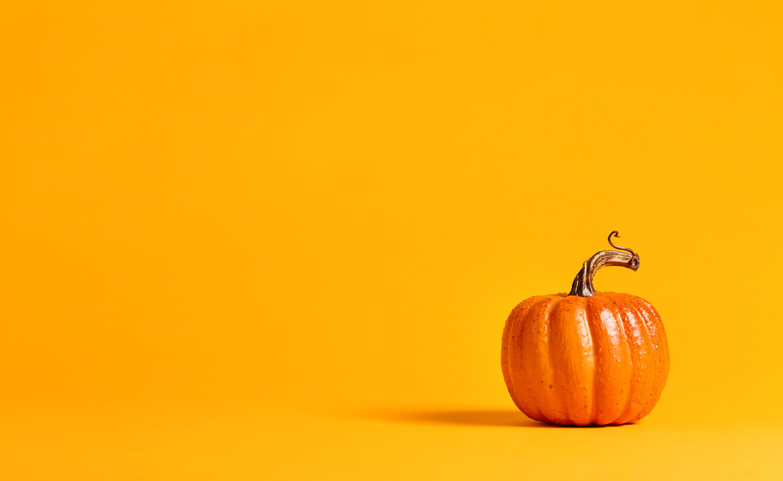 Halloween Pumpkin Business Invoice